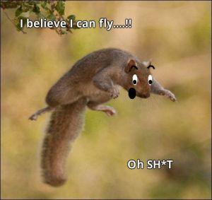 scaredsquirrel