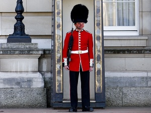 grenadier-guard-600