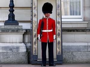 grenadier-guard-600