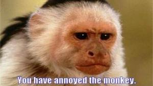 you-have-annoyed-the-monkey