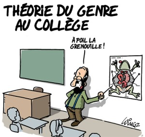 theorie-du-genre-college