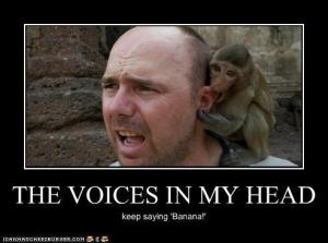 funny-pictures-the-voices-in-my-head
