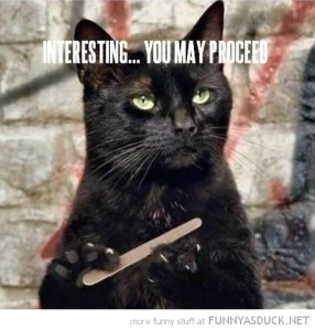 funny-cat-filing-nails-claws-interesting-proceed-pics