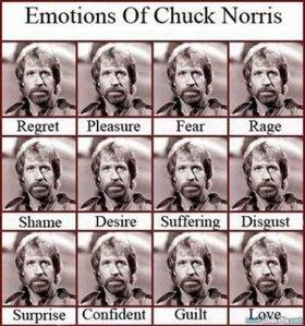 emotions_2c18b4_208007